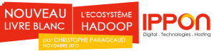 Livre blanc Big Data - L'écosystème Hadoop
