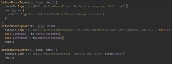 Définition des hooks spécifiques à un composant dans src/components/chap9/Hello.vue
