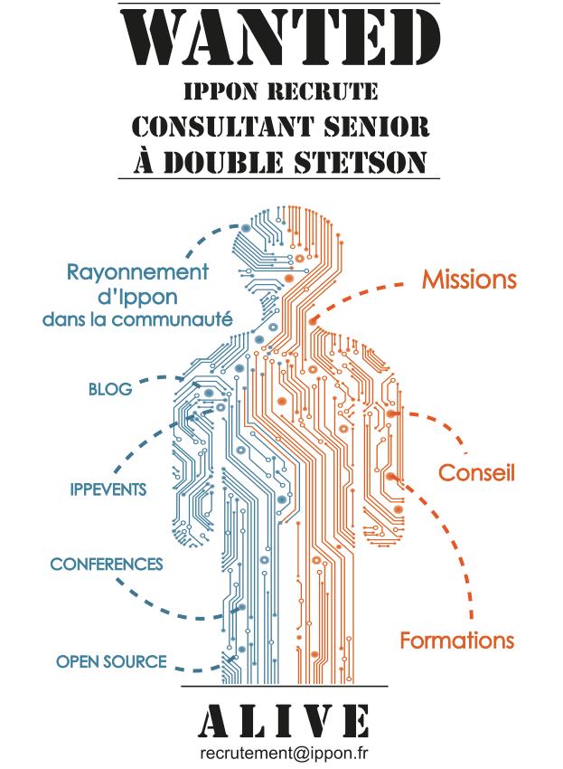 Consultant Senior